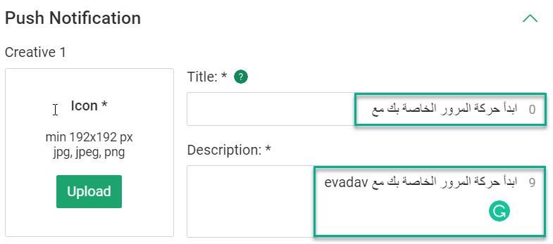 max_bids_and_arabic_creatives.jpg